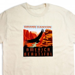 grand-canyon-national-park-9-foot-condor-tee-shirt-vintage-white-close-up-america-the-beautiful-shop-app42077_1107868490